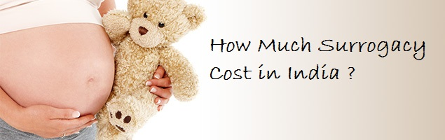 Cost Details of Surrogacy