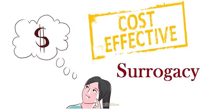 Surrogacy Cost Details
